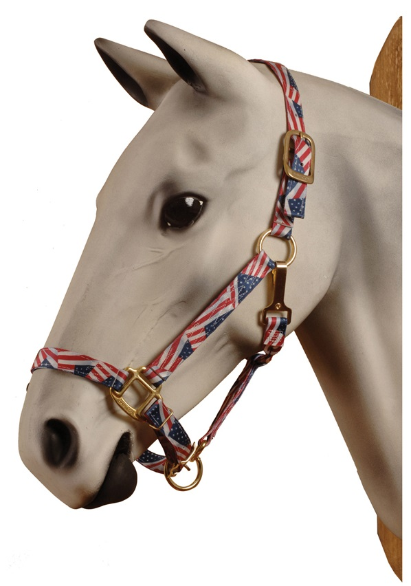 USA Flag Halter
