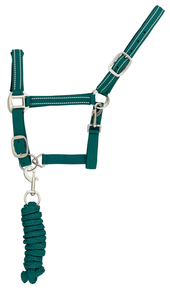 Halter with reflector parts   Green  Cob