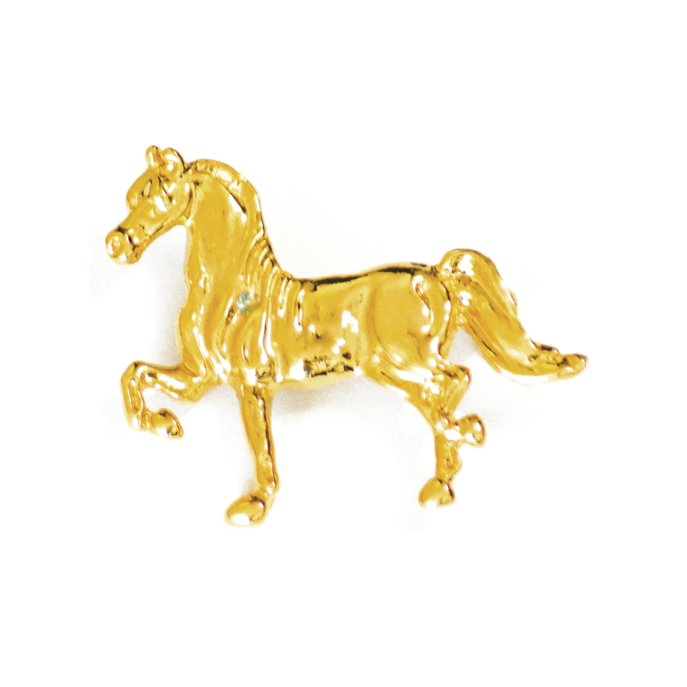 Pins Golden Horse