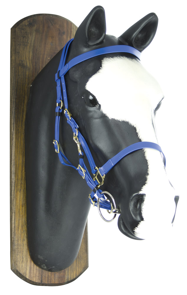 Synthetic  Bridle  Royal Blue