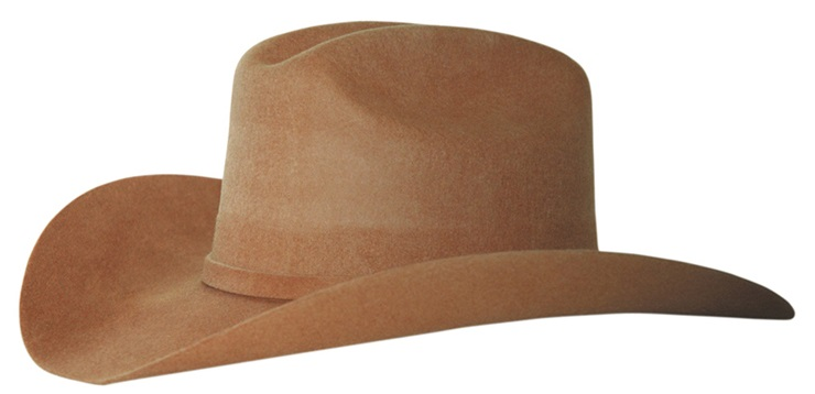 Wool Felt Hat J F Brown Brun 52