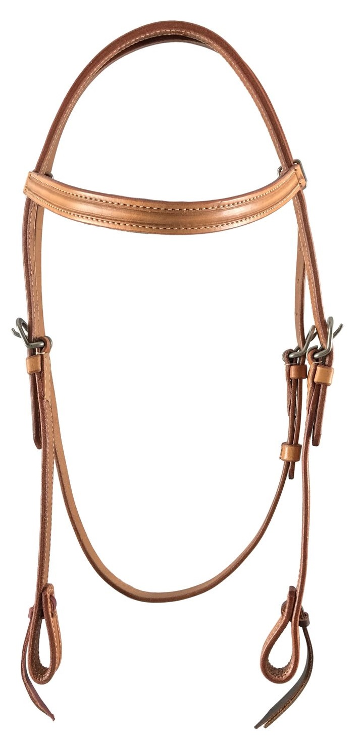 Pool s Bridle