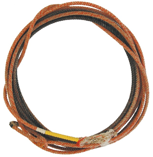Lasso Professional used second hand